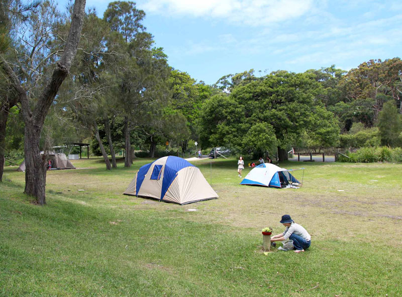 bonnie-vale-campground-in-royal-national-park