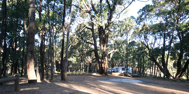 Stringybark Campground