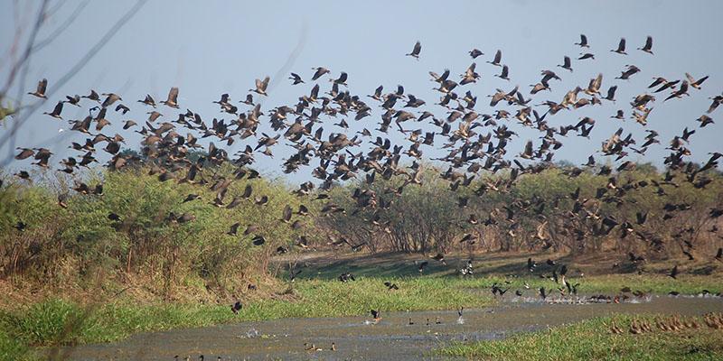 Djukbinj National Park