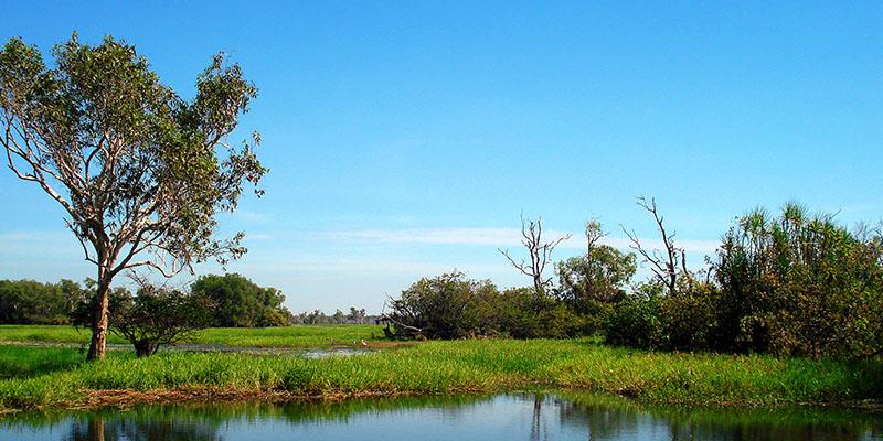 Wetlands of Kakadu National Park