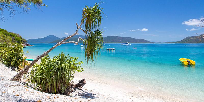 Fitzroy Island Queensland: Campervan Finder