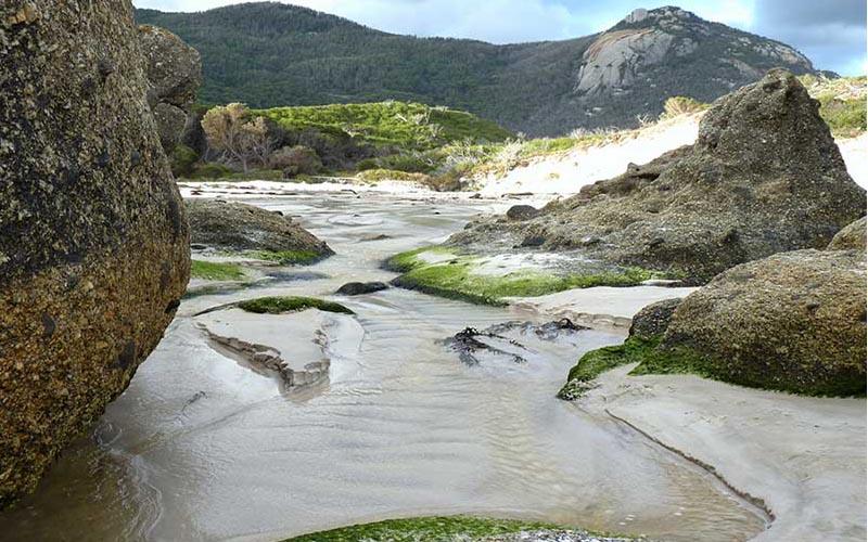 Wilsons Promontory National Park (3)