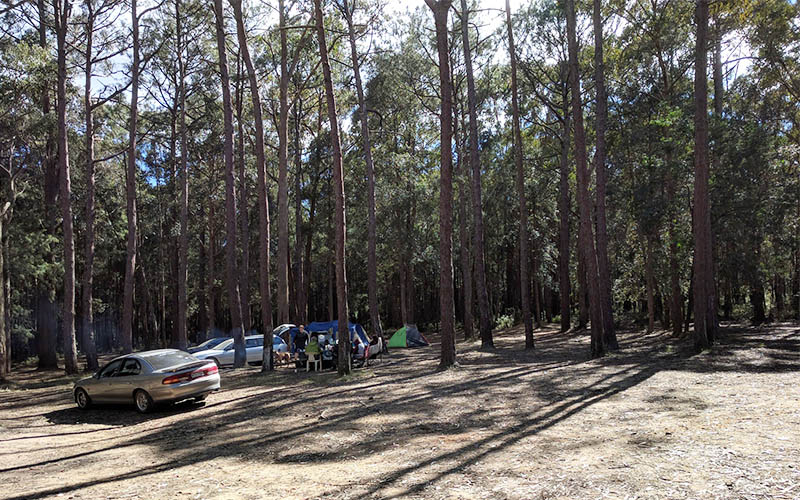 Old Olney Camping Area